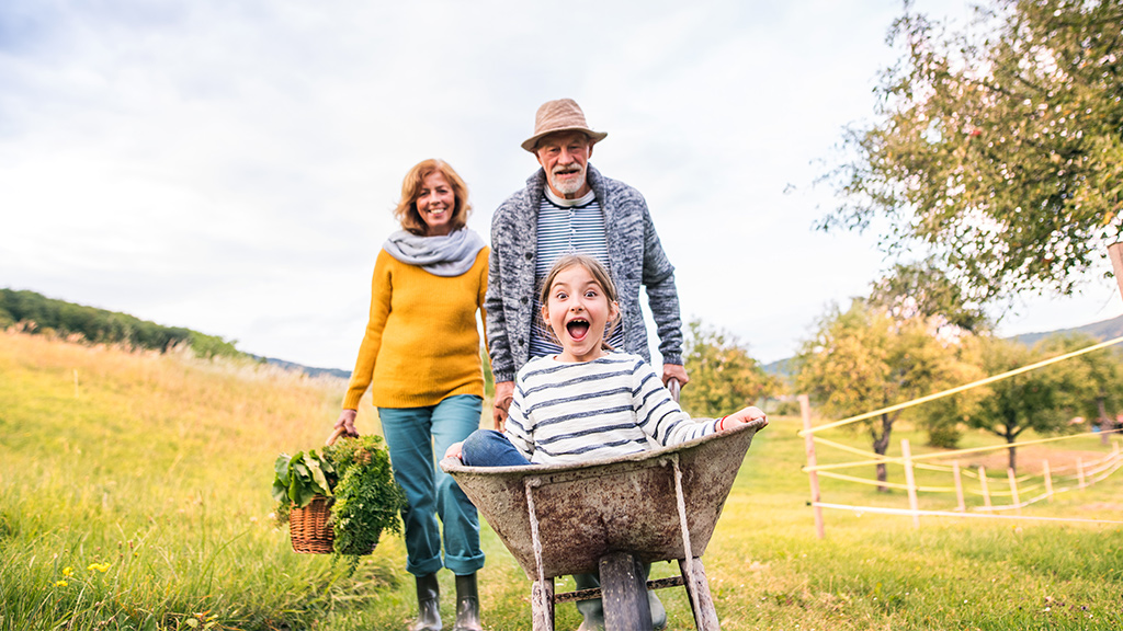 Family in garden pushing girl in wheelbarrow