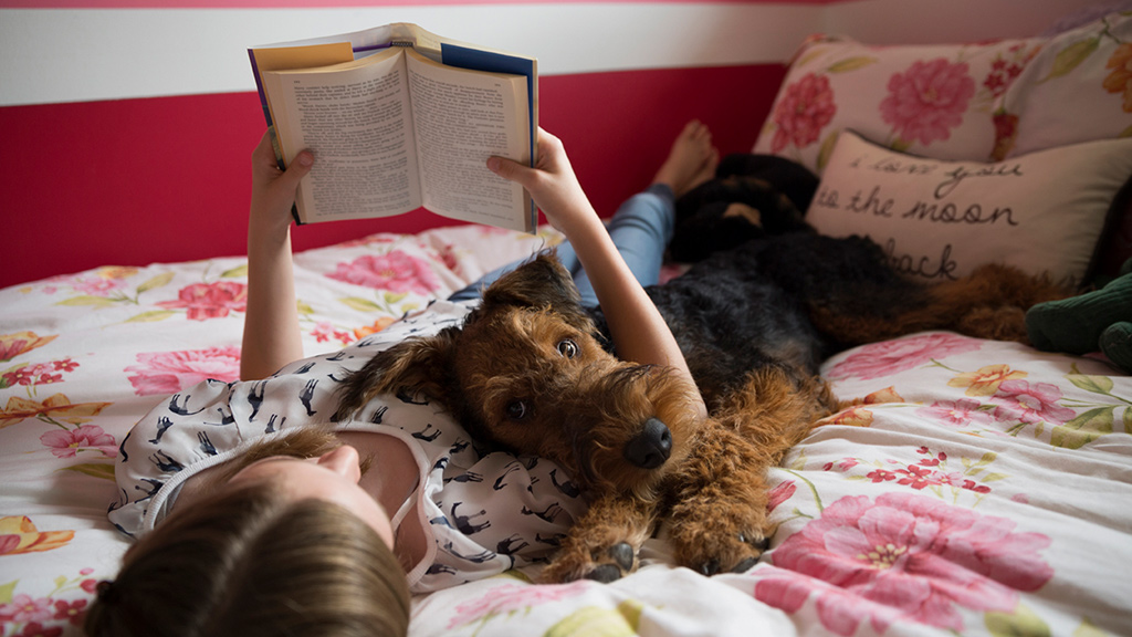 girl reading a book on a bed with a dog