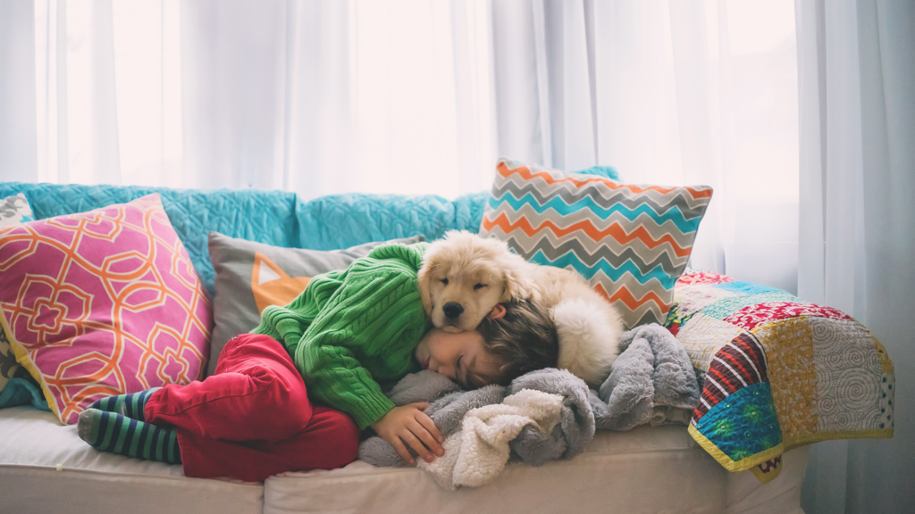Child sleeping on a couch with a dog - Sanford fit