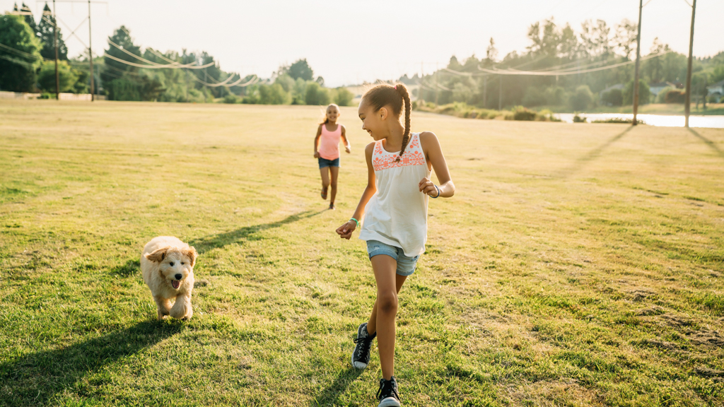 Children running outside with a dog - Sanford fit