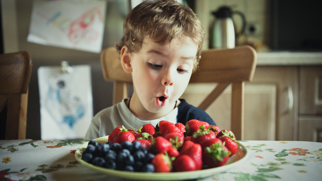 Child seated at a kitchen table looking at a plate of strawberries and blueberries - Sanford fit
