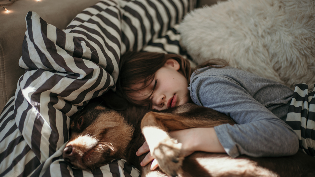 Child napping with dog - Sanford fit